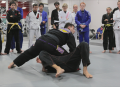 Ground Control Brazilian Jiu-Jitsu Fundamentals